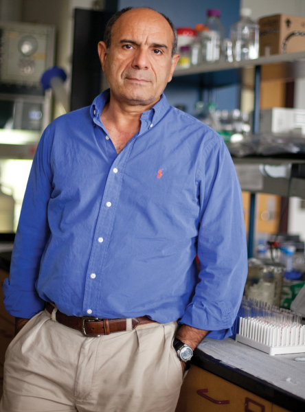 Mansour Mohamadzadeh, PhD, director of the new Center for Inflammation and Mucosal Immunology and a professor in the UF College of Veterinary Medicine